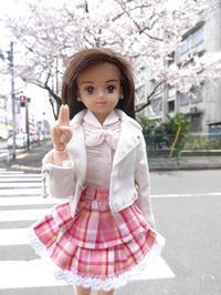 桜咲き筍生えて燕来る - mitsukiのお気楽大作戦