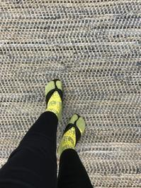 スタッフスタイル @桜開花も肌寒いからせめて靴下だけでも春 - 下駄げたライフ