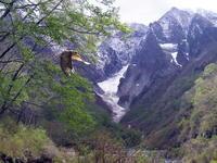 魔の山 - 上州自然散策2
