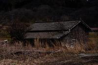 日本国探訪 - Tom's  OM-D