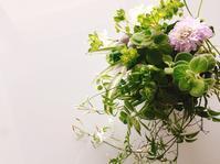 【終了しました】2017/5/16(火) フラリパ のりこ先生フラワーイベントレッスン - 大阪薬膳 Jackie's Table  おもてなし料理教室