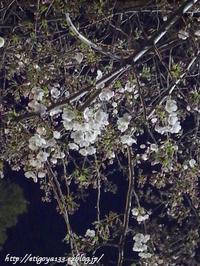 夜桜と村思い出の味夕食 - 丁寧な生活をゆっくりと2