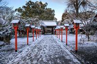 平野神社の雪景色 - 花景色-K.W.C. PhotoBlog