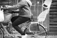 タフな女性たち - ホンテ島 日記