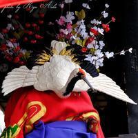 衣装の花は満開 - Ryu Aida's Photo