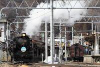 黒い機関車と焦げ茶色の客車 - 2017年早春・上越線 - - ねこの撮った汽車