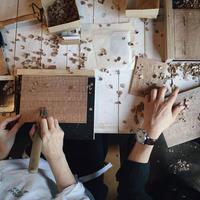 cogu/小具さんによる板皿づくりワークショップ〜参加者募集 - きままなクラウディア