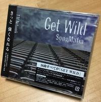 GET WILD Song Mafia到着!┗(*`・∀・)┛=3 ~36曲全部GET WILD?!本当に強くなれるのか?~ - ササリーヌ伍長のズギューンでドギューンでゴゴゴな日常 2
