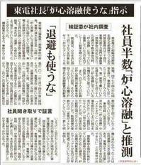 東電社長「炉心溶融使うな」指示 社員半数「炉心溶融」と推測 「撤退も使うな」/東京新聞 - 瀬戸の風