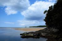 南ぬ島、美ら海の地へ - 西表島 #9 - - 夢幻泡影