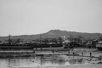 17京都〜鴨川デルタ - 散歩と写真 Fotografia e Passeggiata