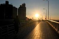 太陽の存在。。。☆彡 - DAIGOの記憶