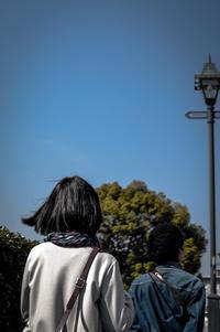 山手 犬と散歩中 -   Okimu