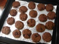 チョコレートクッキー - nagameの庭/yarn slave