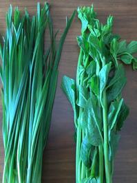 今日の収穫 - 飲食日和 memo
