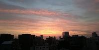夕陽と日想観 - ヨモギ日記