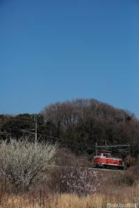 DE工臨 春模様。 - 山陽路を往く列車たち