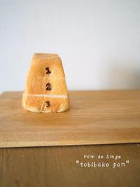Pain de Singe パン ド サンジュ   とびばこパン 大阪 - Favorite place  - cafe hopping -