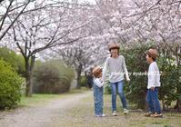 八分咲 - nyaokoさんちの家族時間