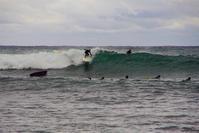 surfin - 雲空海