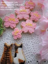 猫ちゃんのお花見*桜咲いた! - nanako*sweets-cafe♪