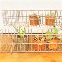 アイアンのガーデンラック - 雑貨店PiPPi