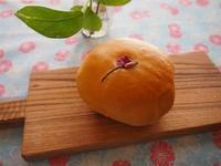 5月のレッスンのご案内 - 土浦・つくば の パン教室 Le soleil