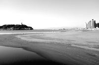 桜端月 寫誌 ④ 江の島腰越辺り - le fotografie di digit@l