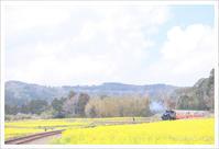 菜の花畑とトロッコ列車 ** - かめらと一緒*
