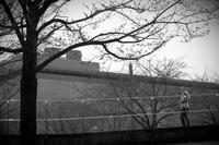 春の人 - Yoshi-A の写真の楽しみ