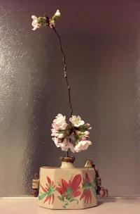 折れていた桜の枝 - 今日のN家
