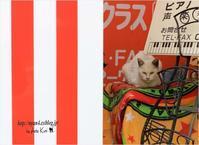看板猫 - 4にゃん日記+