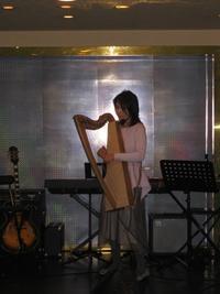 アコースティックライブ - Harp by KIKI