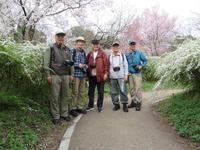 4月度写楽の会:京都植物園他さくら撮影会 - ようこそ「松寿奈良・生駒」へ