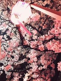 お花見 - museum of modern happiness west53rd日本閣