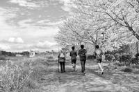 河川敷も春爛漫 - Photo & Shot