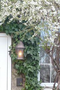 リノベの現場「庭のデザイン、時間をかけて、自分好みをゲットしましょう」編 - 岡山の実家・持家・空き家&中古の家をリノベする。