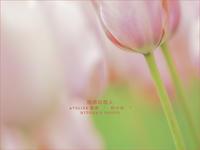 """理想の恋人 - ATELIER 絵夢 """" 時の色 """""""