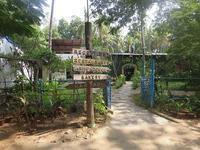 The farm - Miho's India Chennai