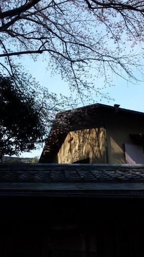 純和風建築の教会でお花見☆ - Liv-creer ■interior&design reform■ *くらしを豊かに