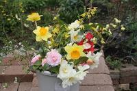 万葉集と庭の花 - シェーンの散歩道