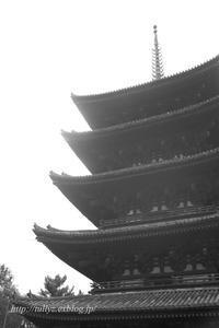 京都・奈良 冬の旅(38) - Tullyz bis /R-D1ときどきM