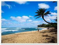 2017年 ハワイ旅行記 3日目 その4 サンセットビーチ - Stay Green