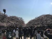 (台東名所)上野恩賜公園 / Ueno Park - Macと日本酒とGISのブログ