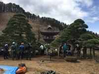 松の菌根菌治療 - 三楽 sanraku 造園設計・施工・管理 樹木樹勢診断・治療