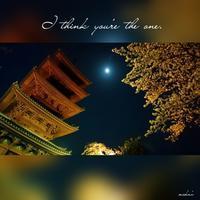 「池上本門寺 五重塔と月と桜」2017.4.7 - わたしの写真箱 ..:*:・'°☆
