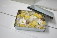 tin box arrangement (yellow) - fu~ren*花日記
