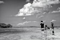 南ぬ島、美ら海の地へ - 西表島 #12 - - 夢幻泡影