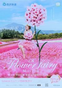 芝桜 Flower fairy - Fire and forget