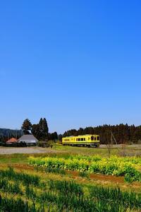 のどかな田園風景に、いすみ350形+いすみ300形 いすみ鉄道 - My B Side Life season2